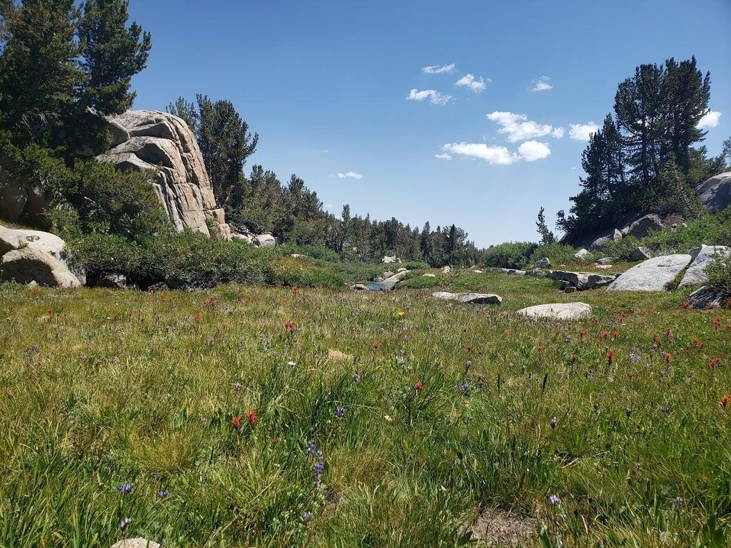 John Muir Trail - Jen Datka Dialogue 3